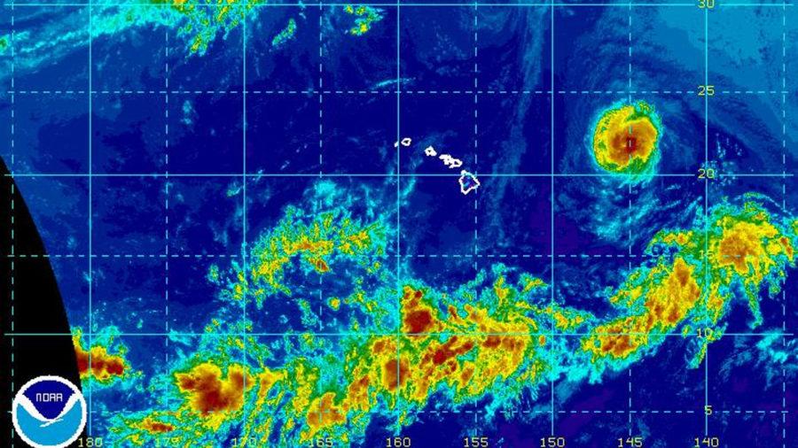 VIDEO: Hurricane Olivia Update at 1 pm Sunday