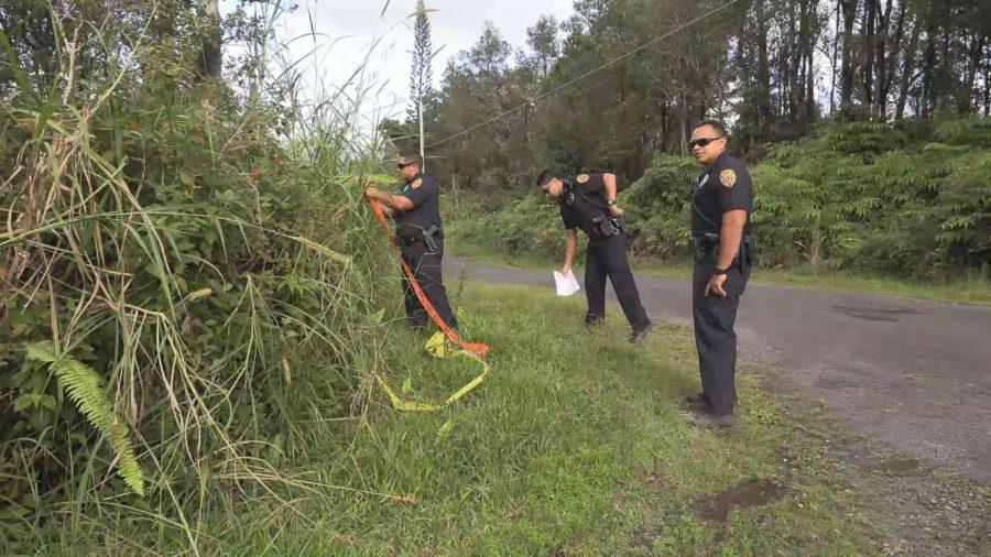 VIDEO: Police Identify Victim In Fern Acres Murder
