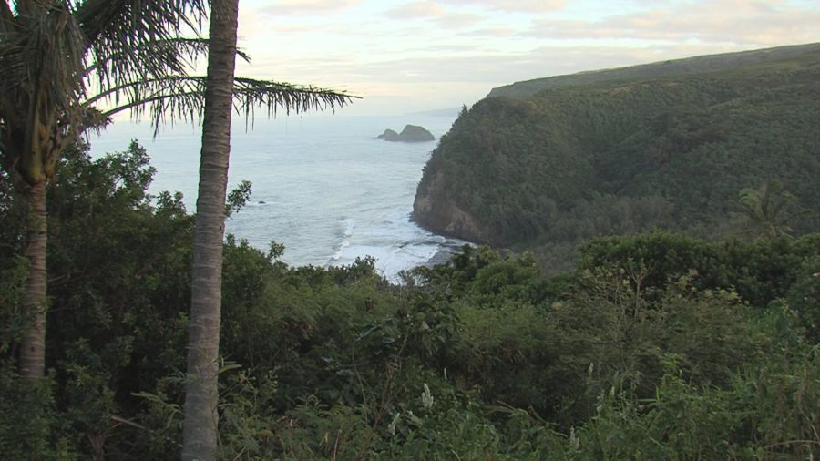 Two Hikers Rescued From Pololu Valley Cliff