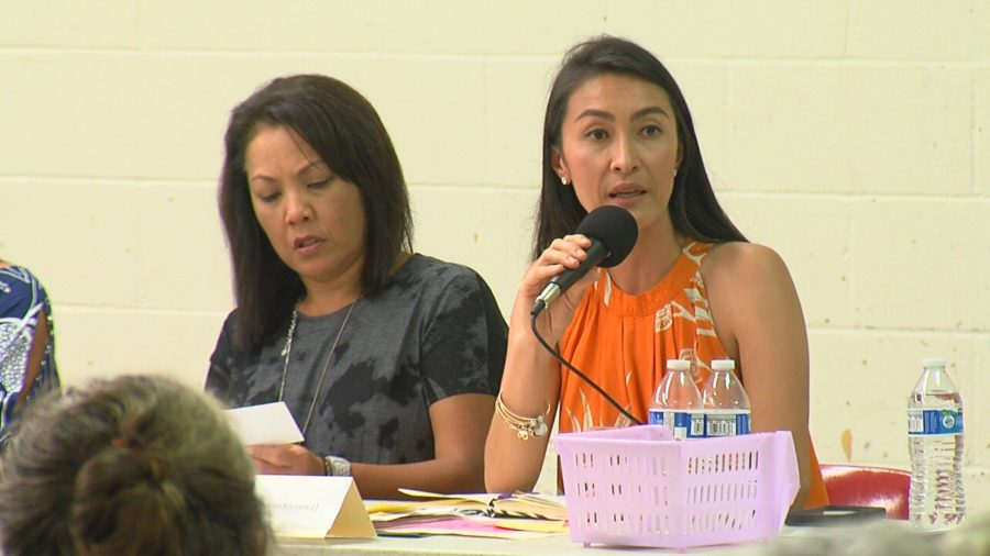 VIDEO: Questions & Answers At Puna Eruption Recovery Meeting