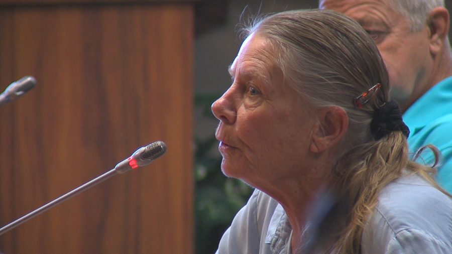 VIDEO: County Council Passes GE Tax Surcharge Increase