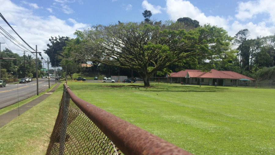 VIDEO: Proposed Puueo Subdivision Title Questioned By Testifiers