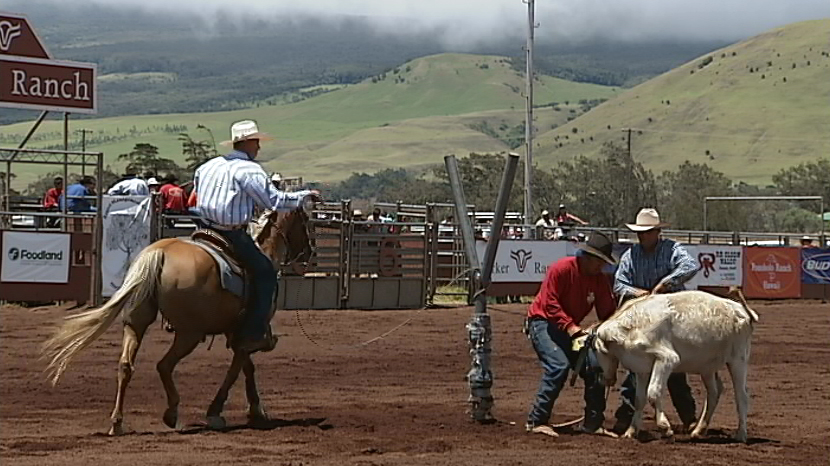 VIDEO: 34th Round-up Club Rodeo