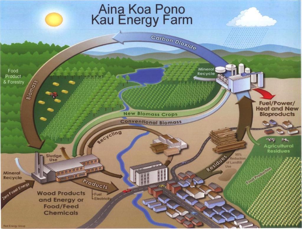 VIDEO: HECO, Aina Koa Pono sign biofuel deal for Ka'u