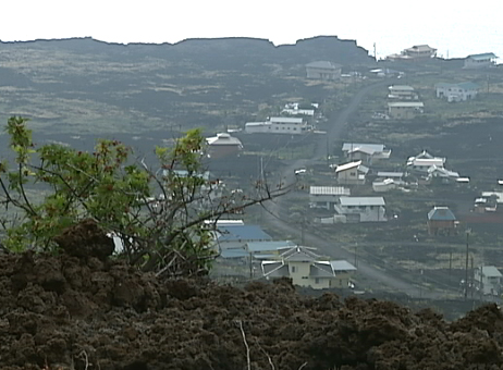 VIDEO: Tsunami took more Hawaii homes, says senator