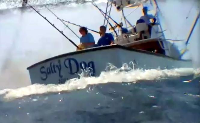 VIDEO: Salty Dog Sportsfishing TV on Kona marlin hunt