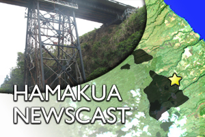 HAMAKUA: Umauma Bridge Draft EA, water shut-off