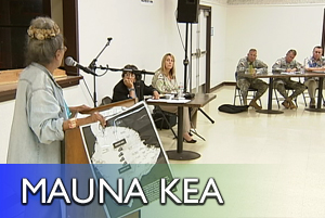 VIDEO: Pohakuloa Training Area plan slammed by Hawaiians