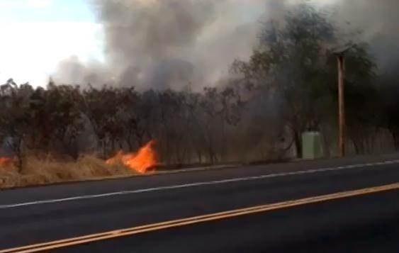 VIDEO: Kona brushfire burns through Pines subdivision