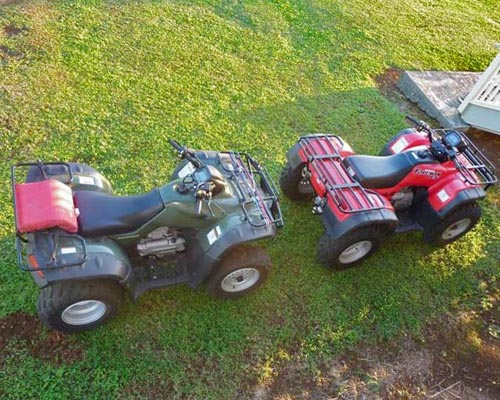 ATVs stolen from Laupahoehoe home