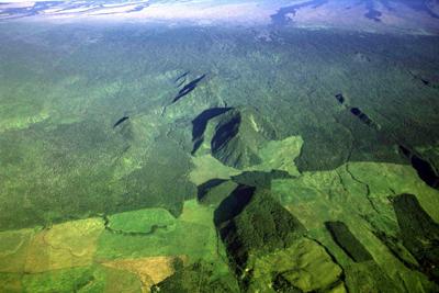 DLNR seeks comment on Ka'u Forest Reserve draft EA