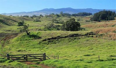 Kukaiau Ranch for sale on Hawaii Island