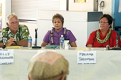 Hawaii State Senate – District 4