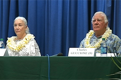 VIDEO: Hawaii County Council district 8 race