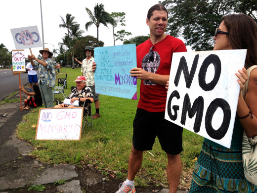 This anti-GMO sign waving in Hilo was the first of a planned day of demonstration island-wide