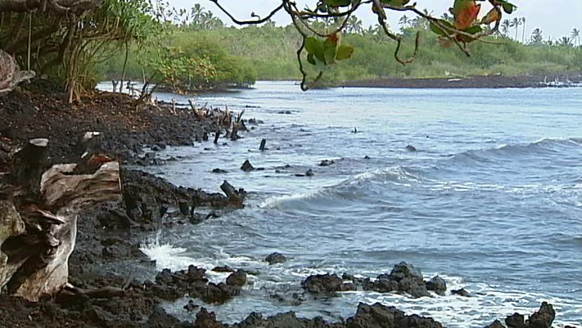 Shark attacks surfer at Pohoiki