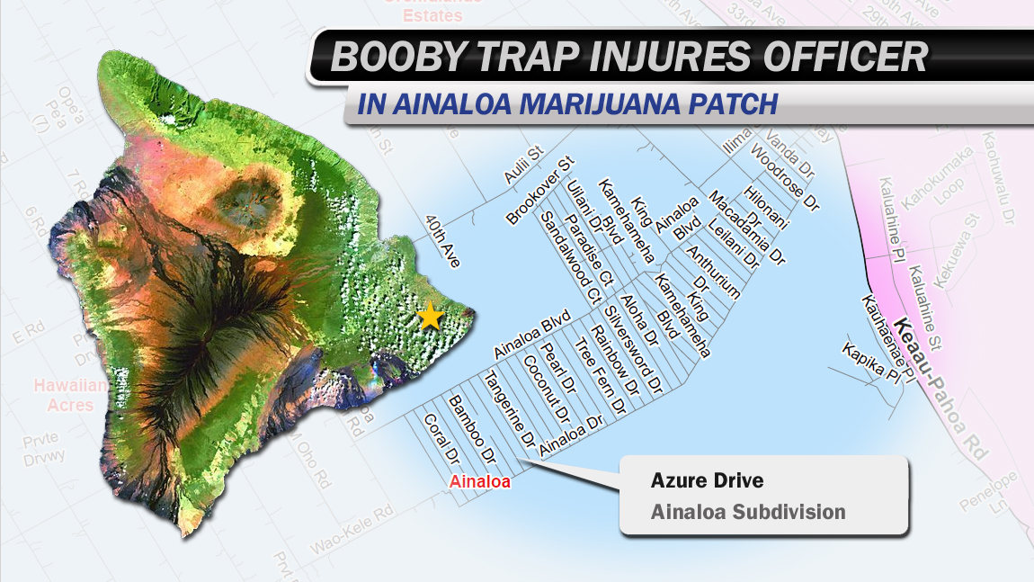 Booby trapped marijuana patch injures officer