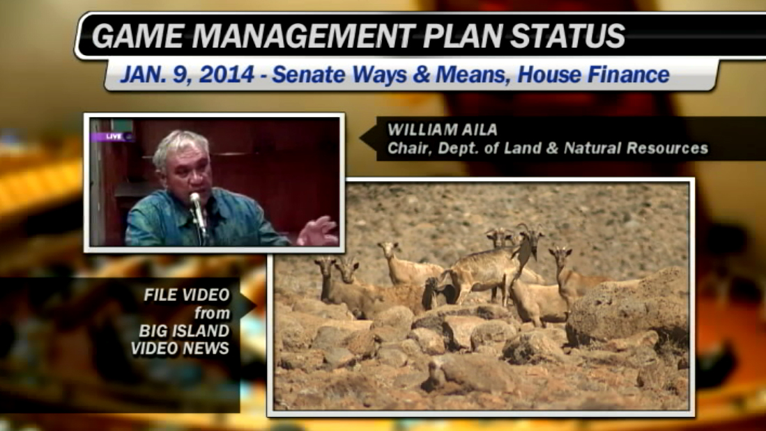 VIDEO: DLNR's Aila defends Game Management Plan delay