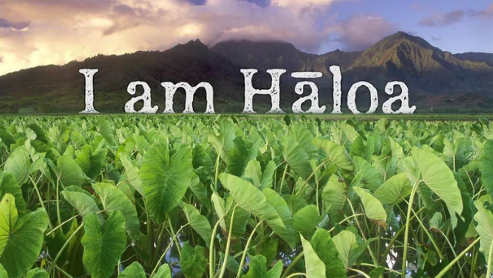 VIDEO: I Am Haloa film looking to Kickstart funding