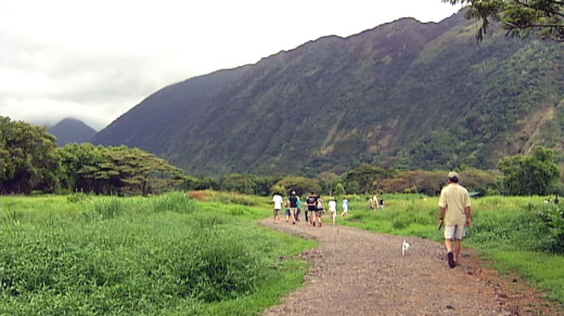 File image of Waipio Valley