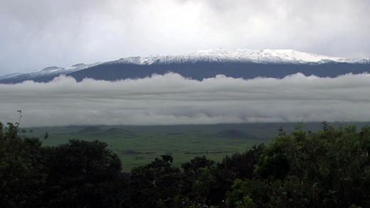 Mauna Kea covered in snow, as seen from Waimea