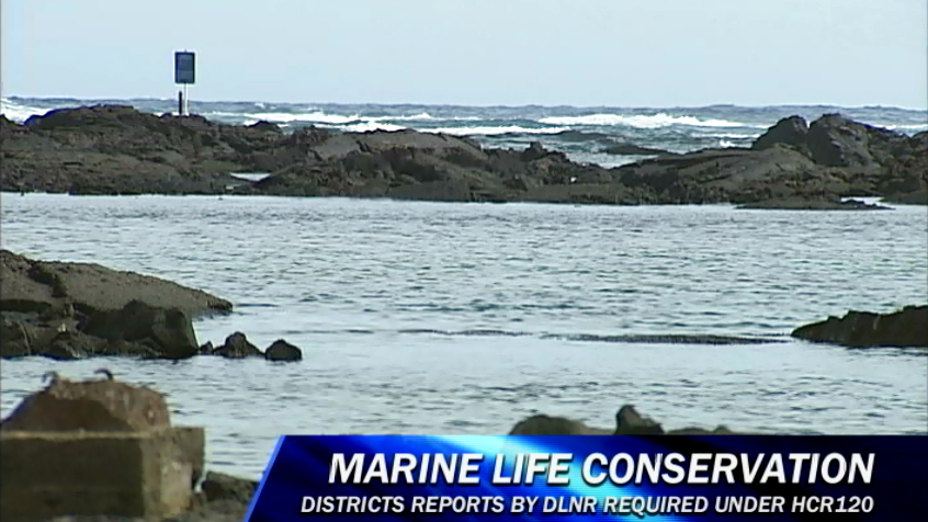 VIDEO: Puna Marine Life Conservation District discussed