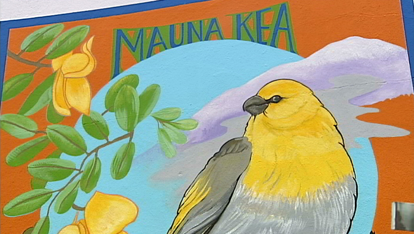 VIDEO: Palila mural celebrated in Downtown Hilo