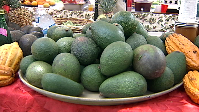 VIDEO: Hawaii Avocado Festival held in Kona