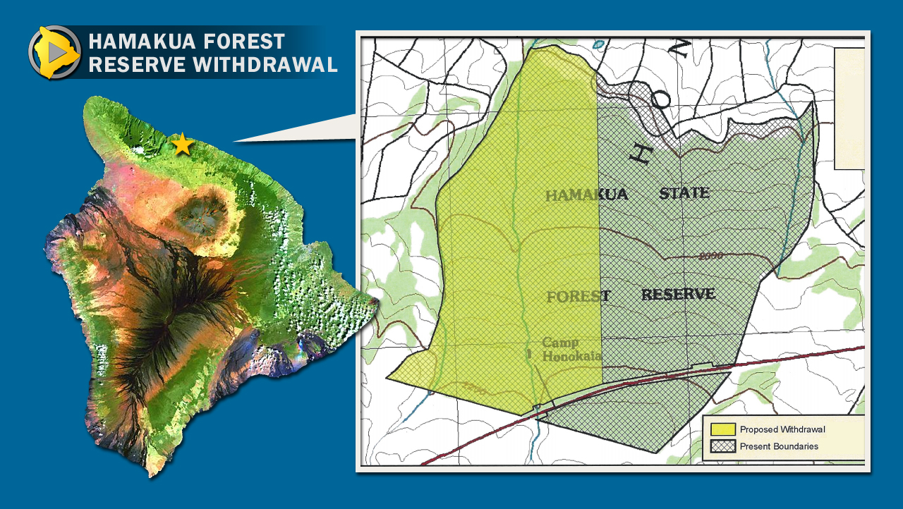 Hamakua Forest Reserve Withdrawal Considered