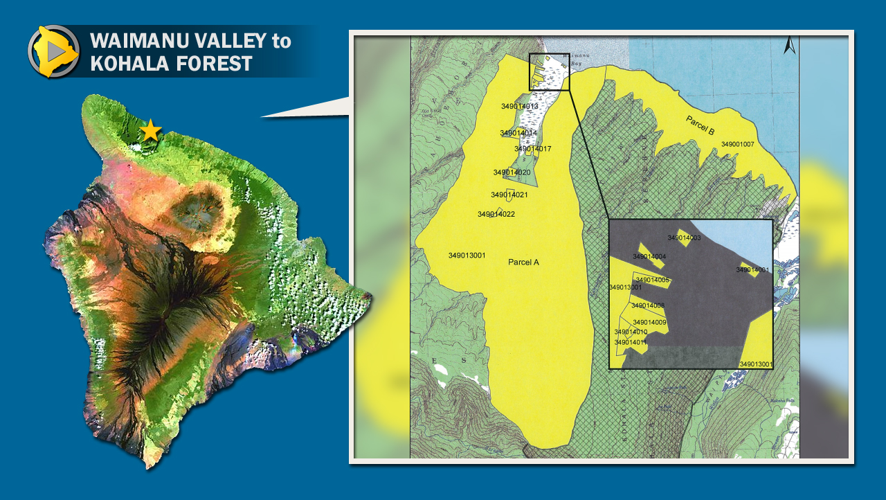 3,431 acres in Waimanu to be designated Kohala Forest Reserve