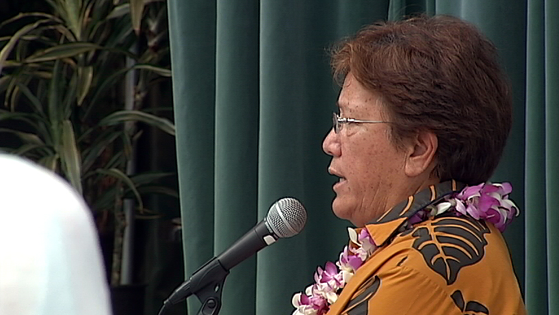 VIDEO: Geothermal debated by Hawaii County Democrats