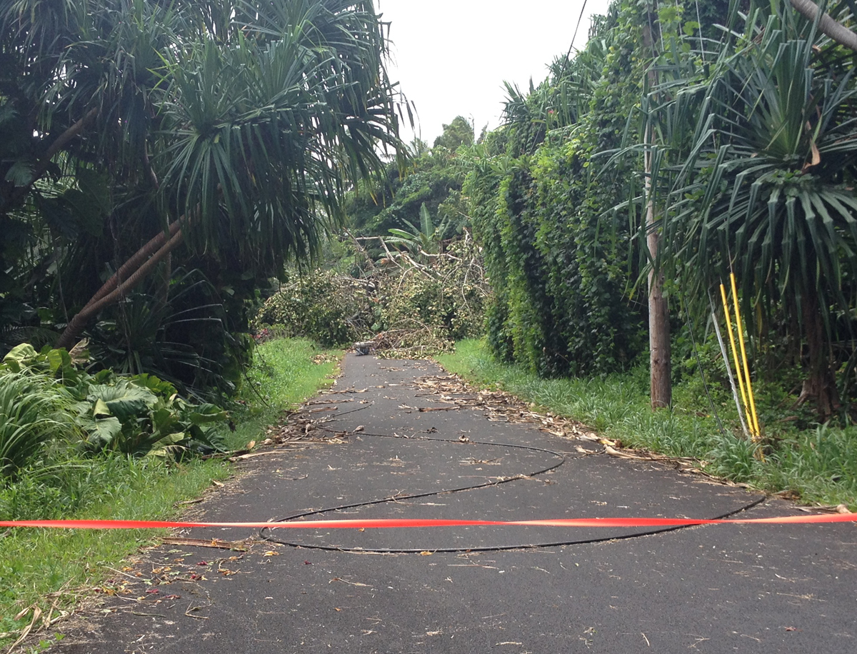 Civil Defense Post-Iselle Update for Monday, Aug. 18