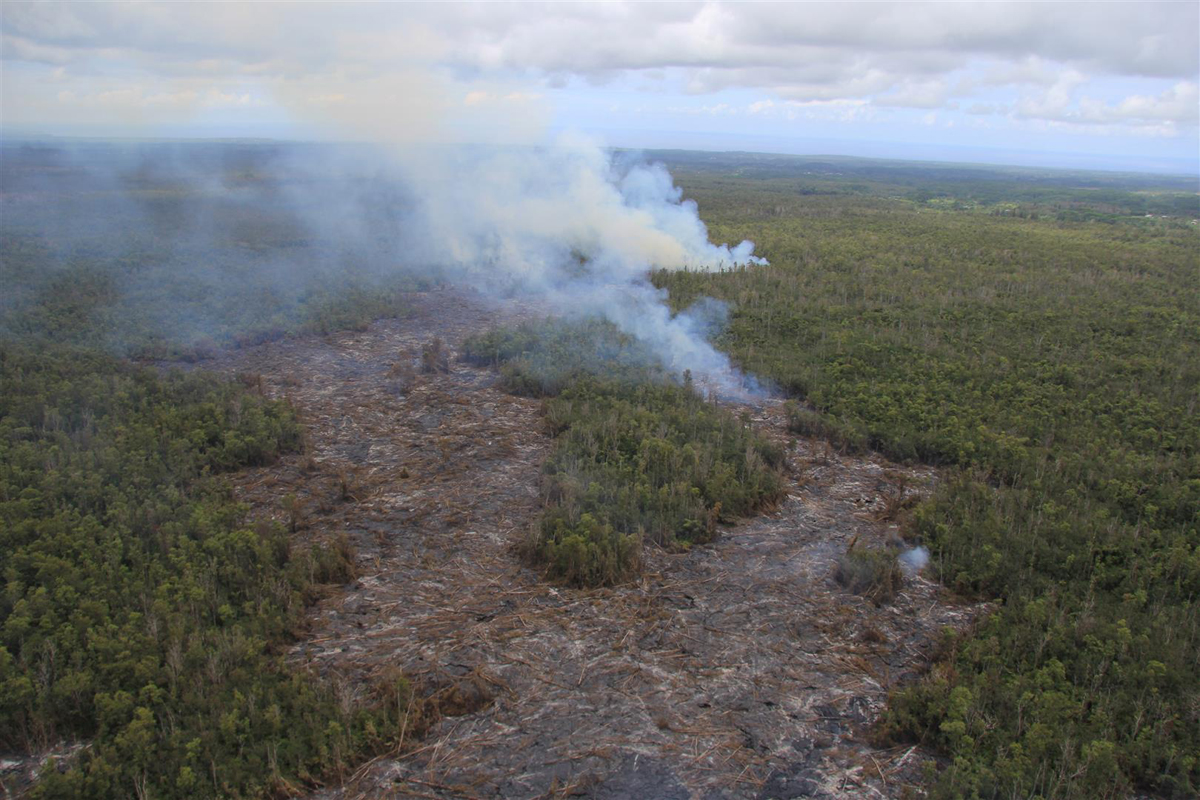 (USGS HVO) View from above the end of the June 27th lava flow, looking along its northeast trend through the Wao Kele o Puna Forest Reserve. On the afternoon of September 10, 2014, the flow front was 0.6 km (0.4 mi) from the boundary between the Forest Reserve and Kaohe Homesteads, visible at far right.