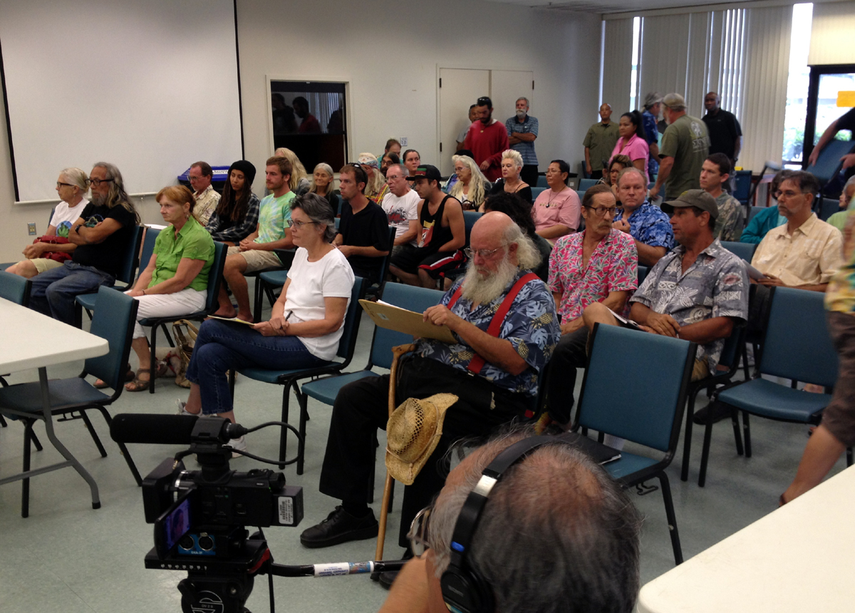 VIDEO: Testifiers Speak Out on Hawaii Medical Marijuana Law