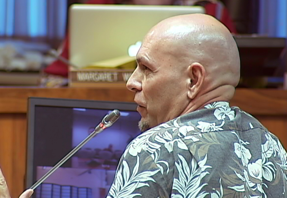VIDEO: Bridge Over Lava, Other Ideas Discussed at Council