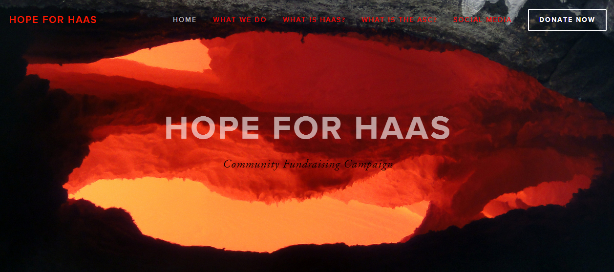 Hope For Lava Threatened HAAS In Student Website