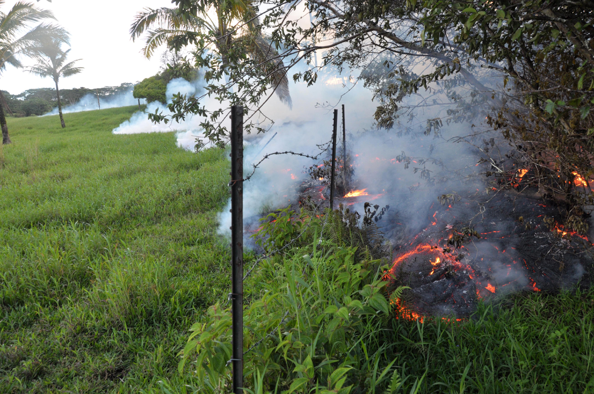 USGS HVO: Late on Sunday afternoon, a barbed wire fence is overrun by lava from the June 27th flow lobe that crossed through the Pāhoa cemetery earlier in the day. To the far left in the distance, a plume of smoke marks the location of the flow lobe that passed southeast of the cemetery and through the pasture.
