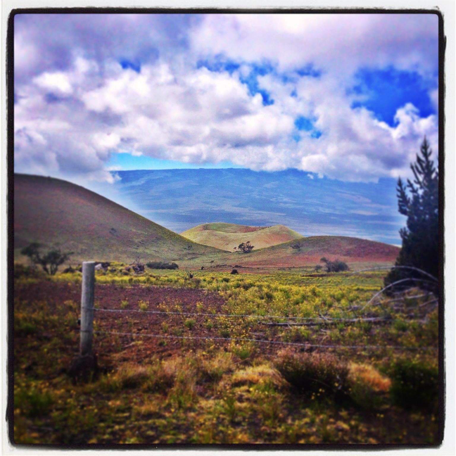 Mauna Kea Report – Tuesday, Nov. 25