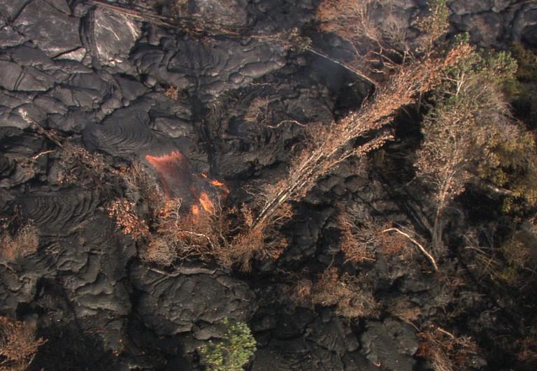 VIDEO: Morning Lava Update – Saturday, Jan. 24