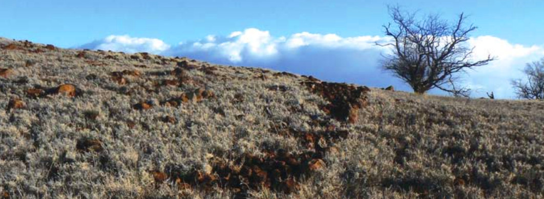 BLNR: Conservation Easement For Kaiholena South