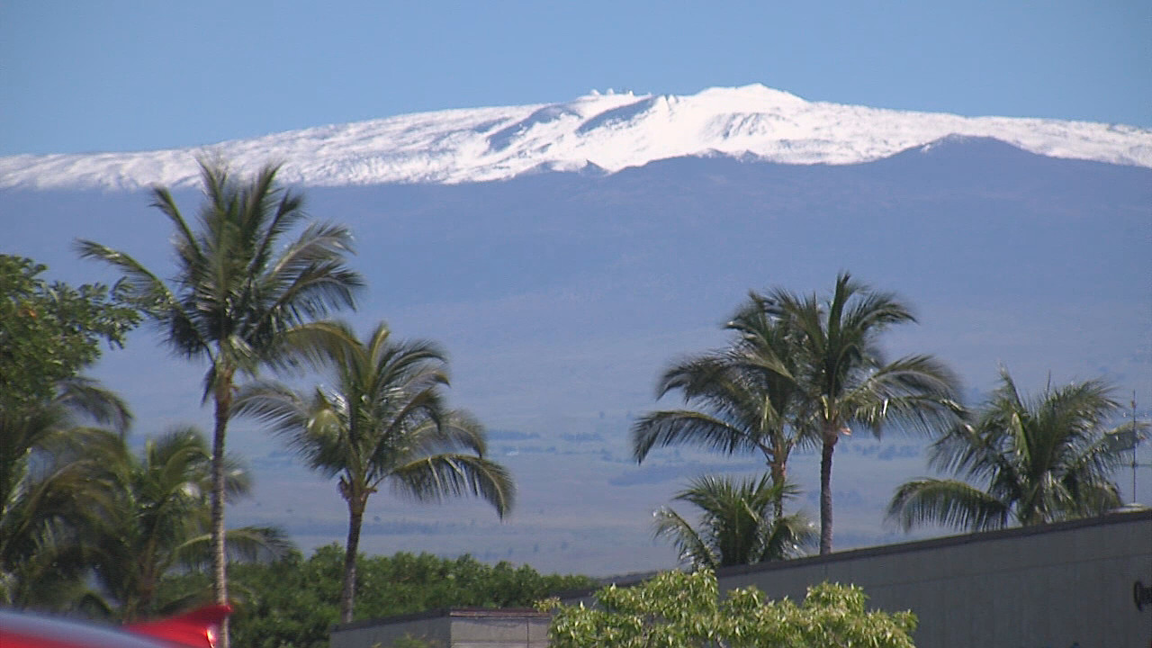The view of Mauna Kea behind palm trees in Waikoloa on Saturday.