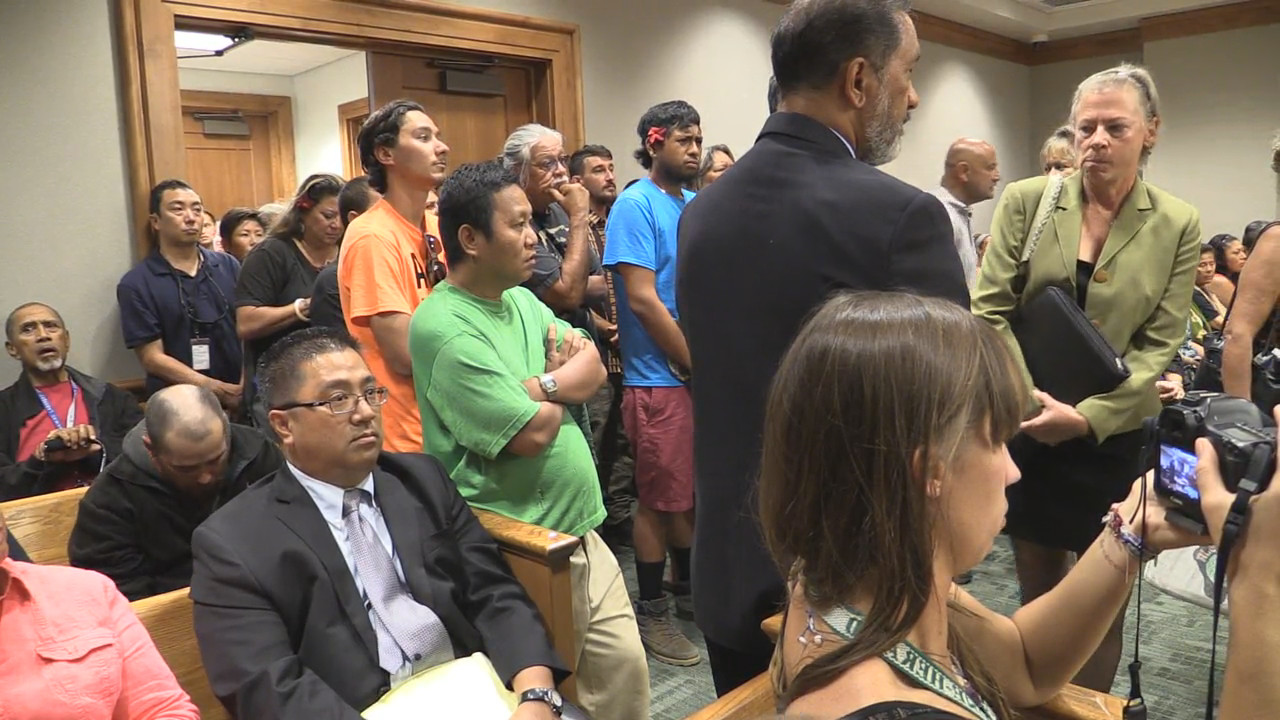 VIDEO: Mauna Kea 31 Appear In Hilo Court