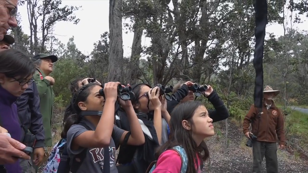 VIDEO: BioBlitz Underway at Hawaii Volcanoes National Park