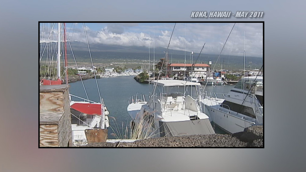 Kona Man Killed After Swordfish Punctures Chest
