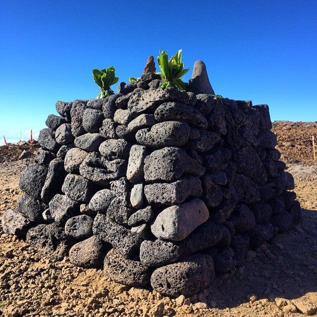 Ahu Built At TMT Site Before Construction Resumes on Mauna Kea