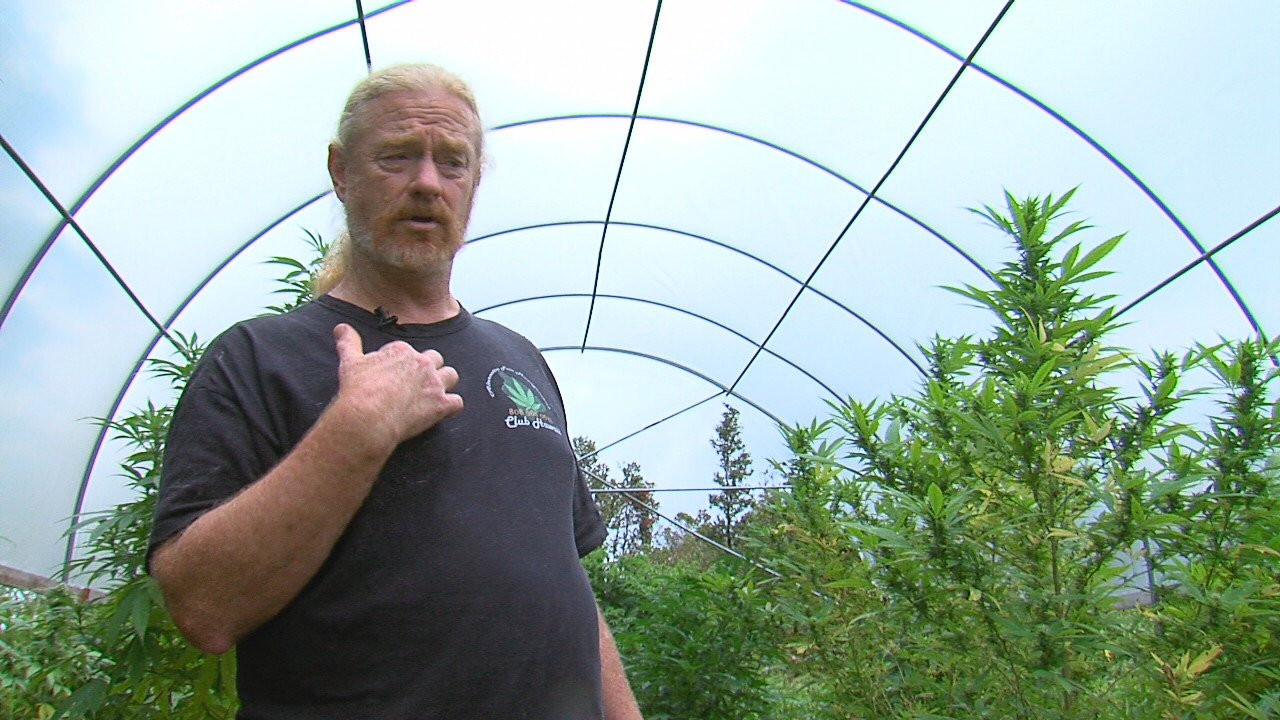 VIDEO: Hawaii Supreme Court Rules Against Cannabis LLEP