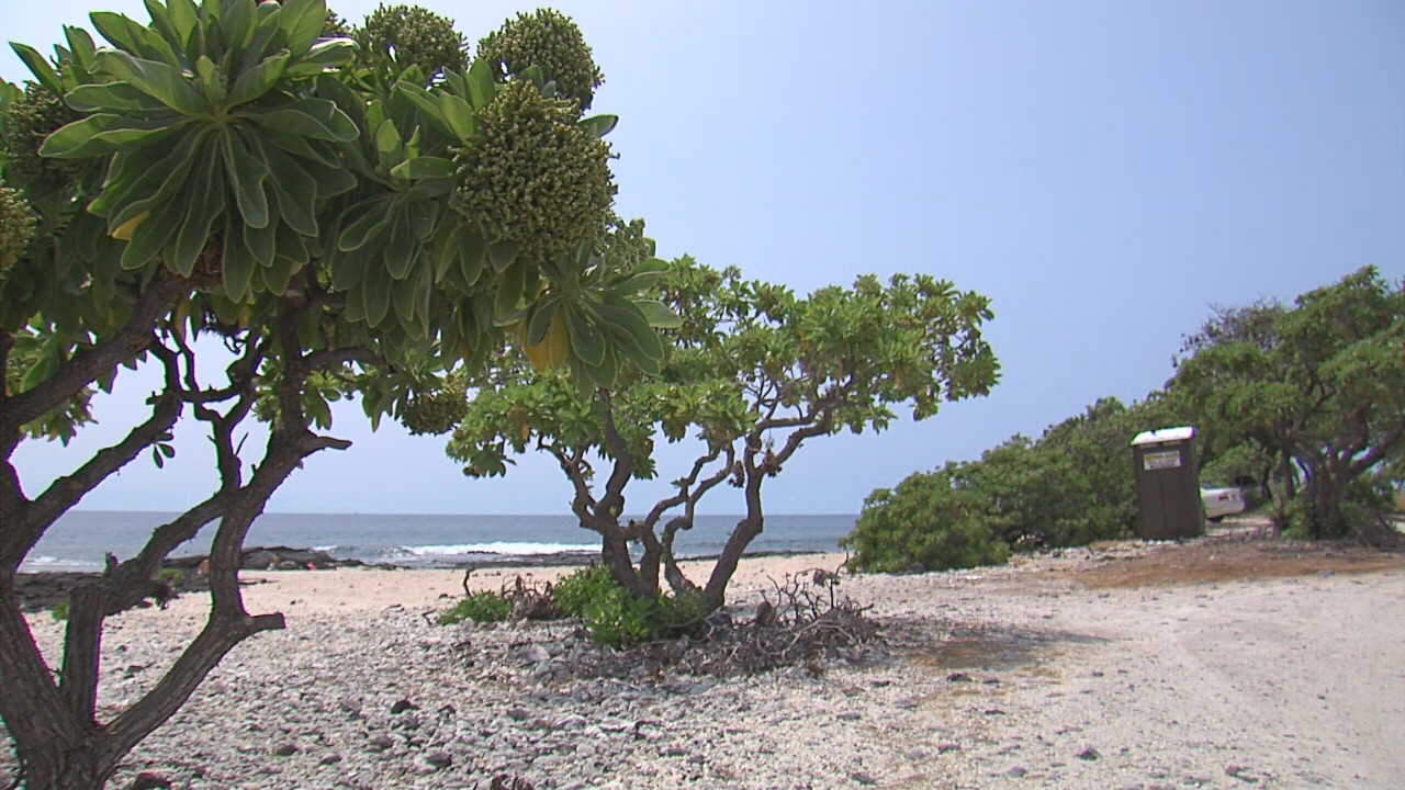 VIDEO: Lua Approved For Kona's O'oma Beach