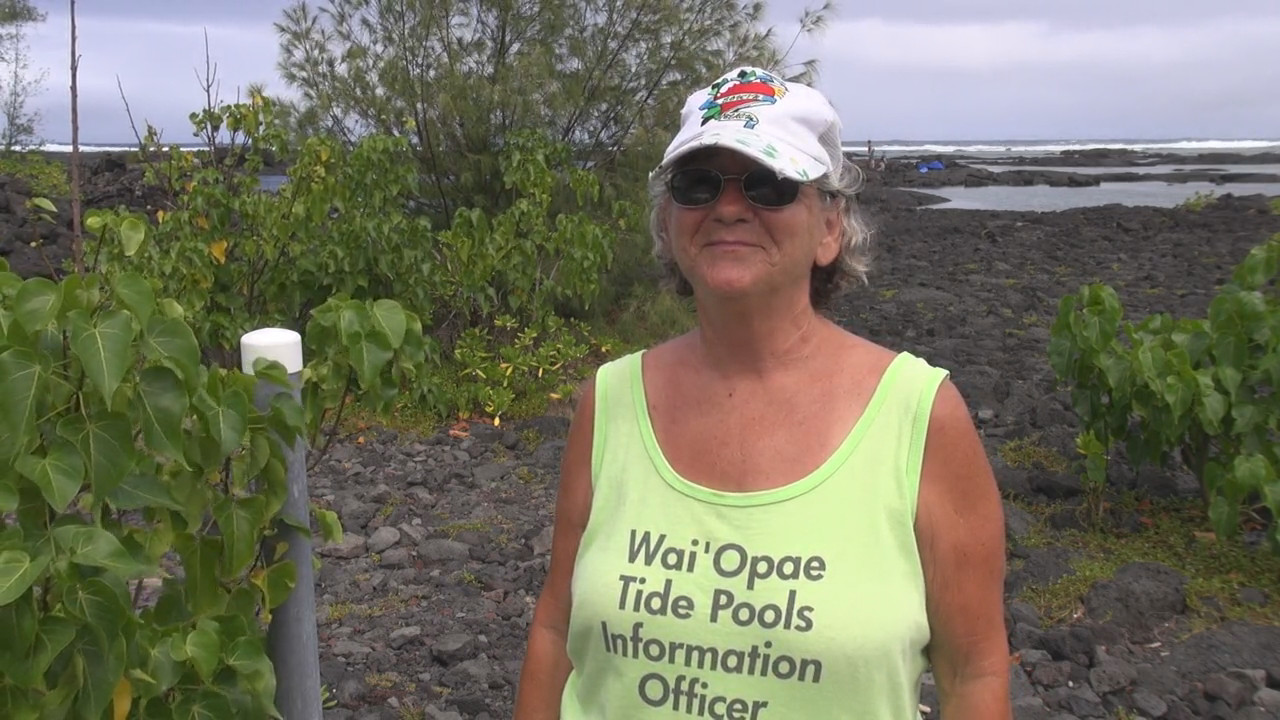 Nadean Rutledge at the Kapoho Tide Pools on August 10, 2013. Image from video courtesy Daryl Lee.