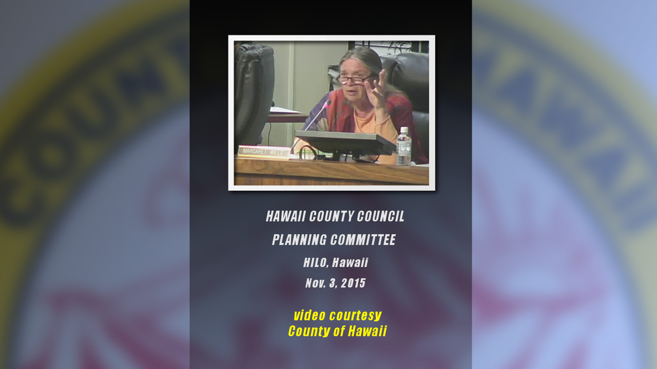 VIDEO: CDP Action Committee Cutbacks Discussed