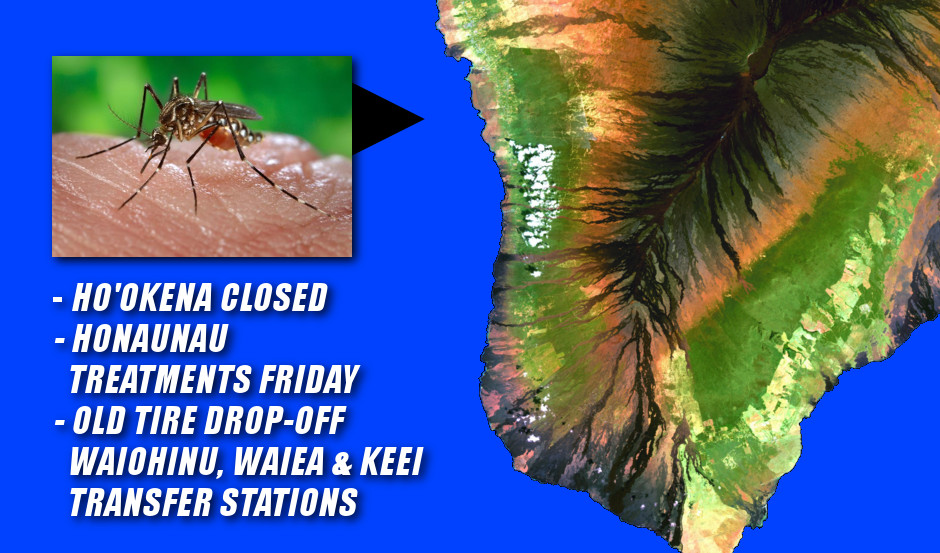 Dengue Fever Update: Honaunau Treatments Friday